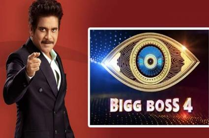 Bigg Boss 4 Telugu: Swathi Dixit Next Wild Card Entry In House - Sakshi