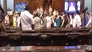Rajya Sabha Protest Viral Video
