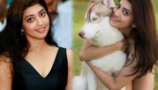 Actress Pranitha Subhash Exclusive Photo Gallery - Sakshi