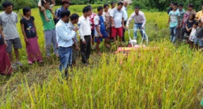 Training on Go-based farming - Sakshi