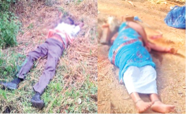 Family Members Fight With Knives on Land Issue West Godavari - Sakshi