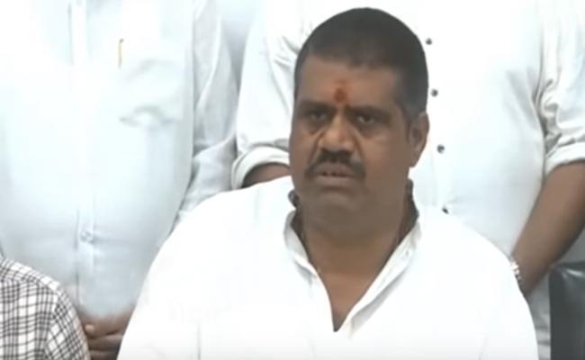Avanthi Srinivas Slams On Chandrababu At Visakhapatnam - Sakshi