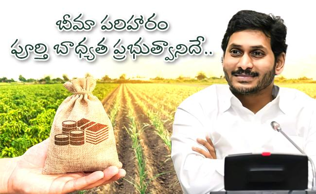 CM YS Jagan Releases Rs 596 Crore 2018 19 Pending Rabi Crop Insurance - Sakshi