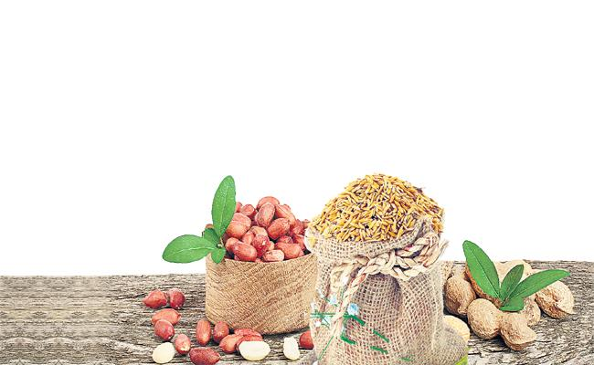 Innovative change in the process of seed distribution in AP - Sakshi