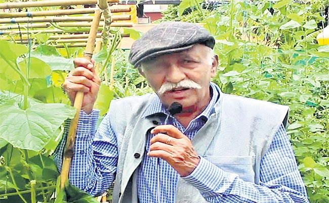Terrace Kitchen Gardening Doctor BN Vishwanath Story In Sagubadi - Sakshi
