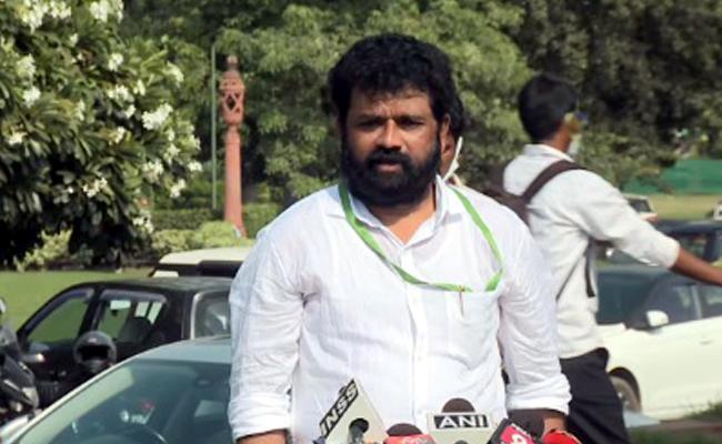 Nandigam Suresh Serious On MP Raghurama Krishnam Raju Comments - Sakshi