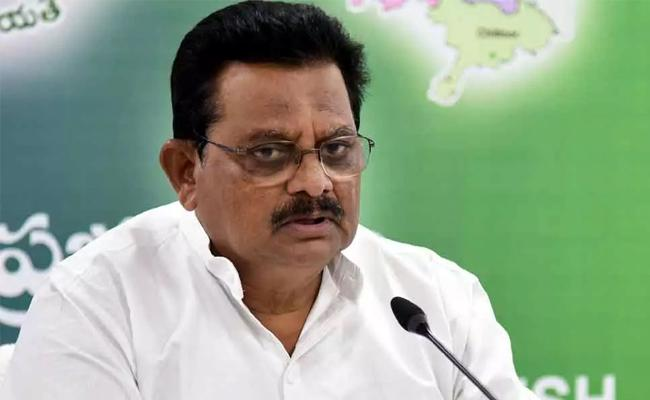Minister Ranganatha Raju Slams Chandrababu Over House Rails - Sakshi