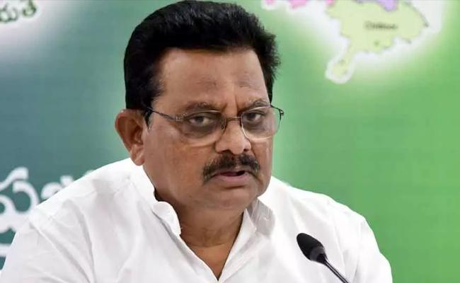 Minister Sri Ranganatha Raju Comments Over Antarvedi Temple Chariot Fire Issue - Sakshi