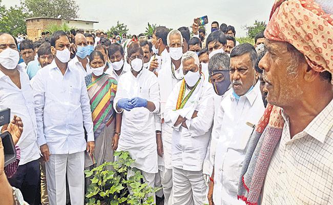 Mallu Bhatti Vikramarka Comments On KCR - Sakshi