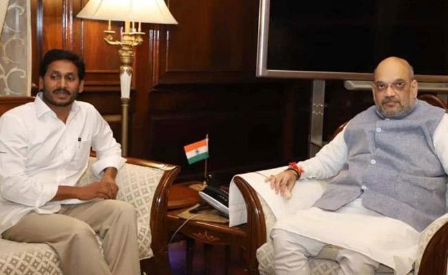 CM YS Jagan Meets Home Minister Amit Shah In Delhi - Sakshi